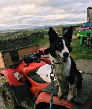 Polly loving the quad bike
