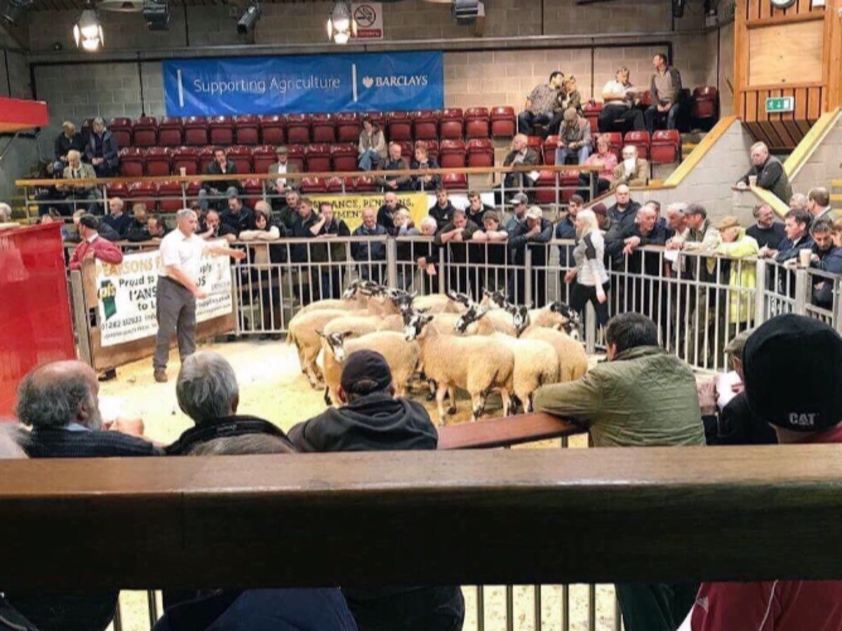11 types of people you will always spot around the Auction Mart ring